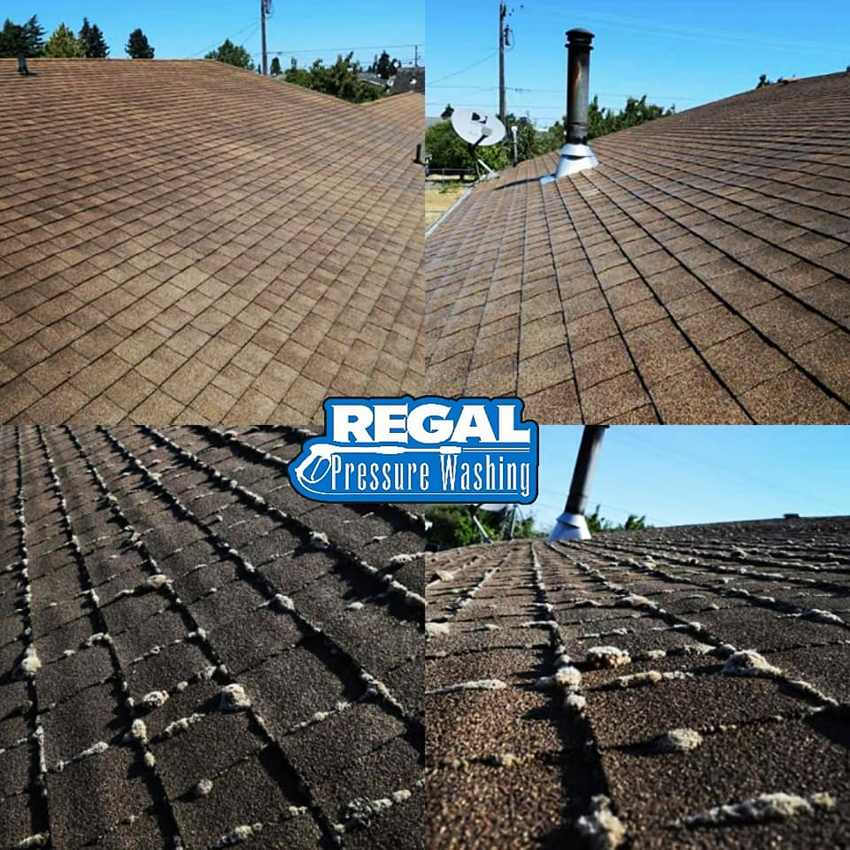 Pressure Washing Roof in Port Angeles